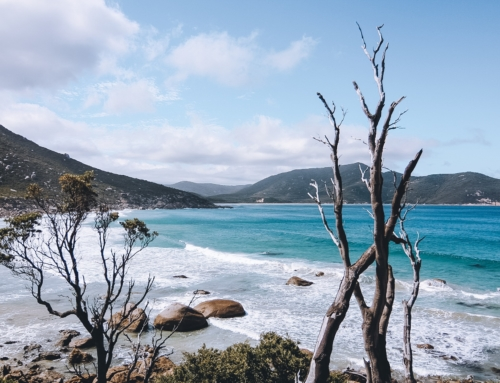 AUSTRALIE ⎪ ROAD-TRIP : ITINÉRAIRE DE SYDNEY À MELBOURNE