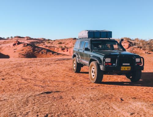 AUSTRALIE ⎪ NOTRE AVENTURE EN 4X4 SUR LA GIBB RIVER ROAD