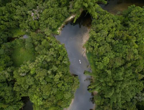 EXPÉDITION HANDI'CAP SUR L'AMAZONIE